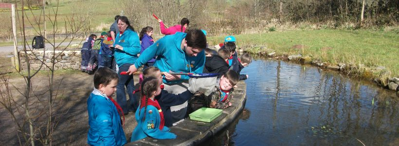 Brownies, Guides, Cubs and Scouts
