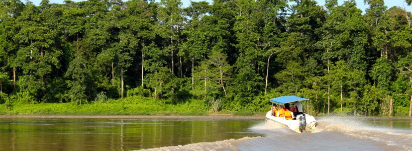 A boat maneuvers down the Kinabatangan River in Borneo