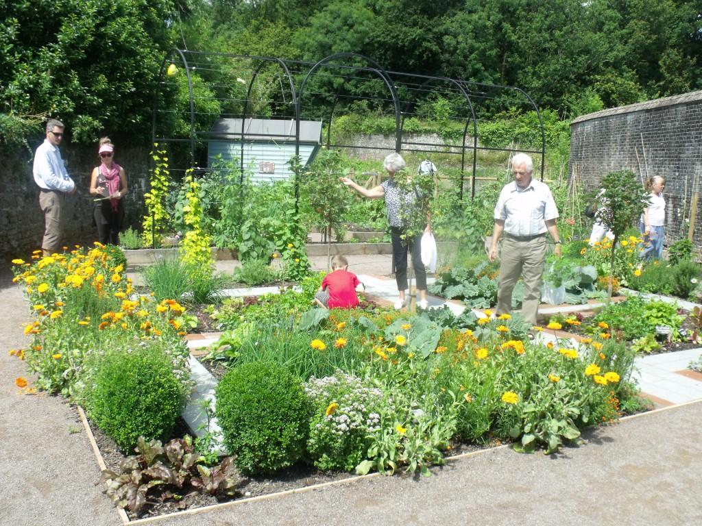 growing the future garden - Sensory Garden