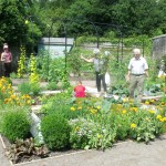 Growing the Future Garden