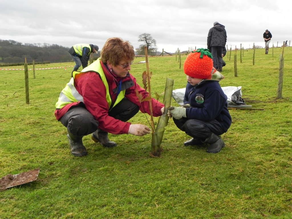 Some very young volunteers have helped us to plant  Woods of the World