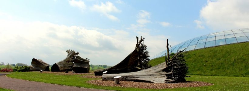 Ghost forest outside the Great Glasshouse