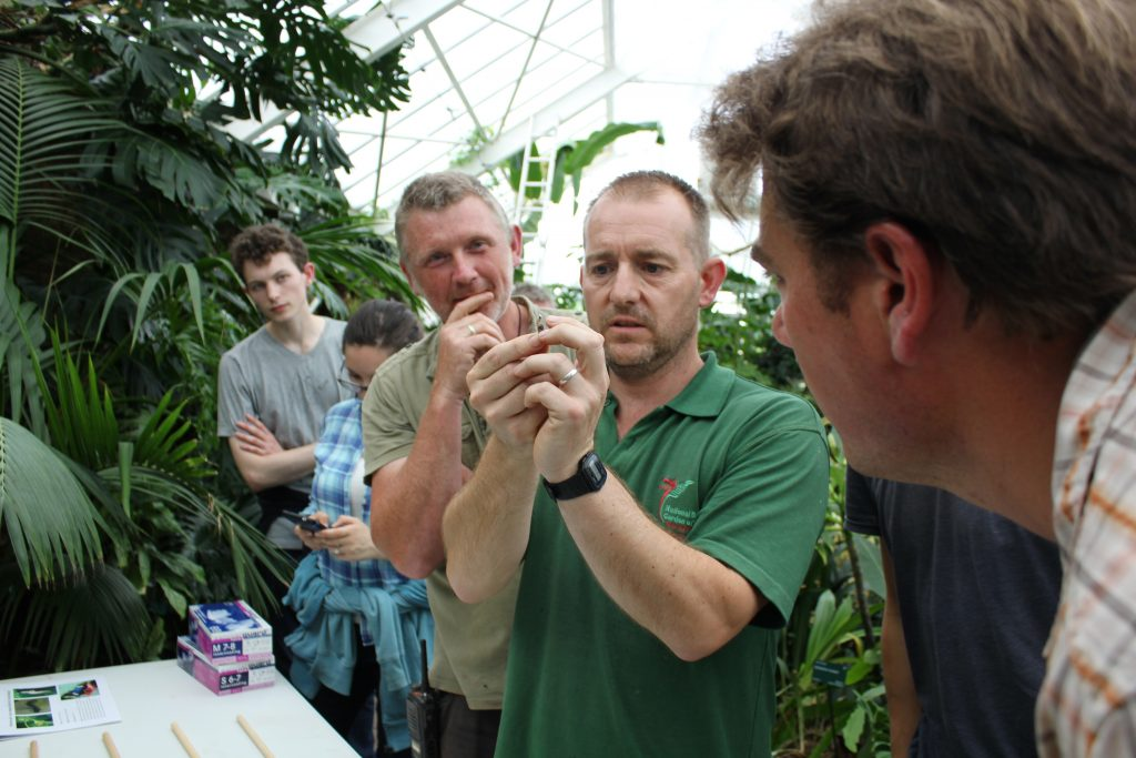 Work with us | National Botanic Garden of Wales