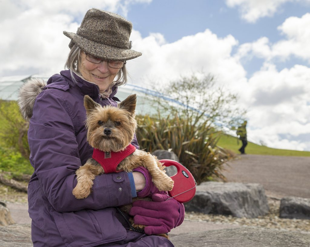 Doggy Day at the National Botanic Garden of Wales
