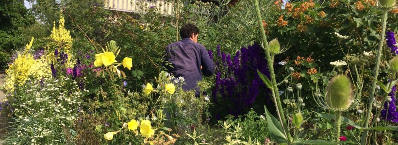 Life as an Apprentice: a week at Great Dixter, East Sussex