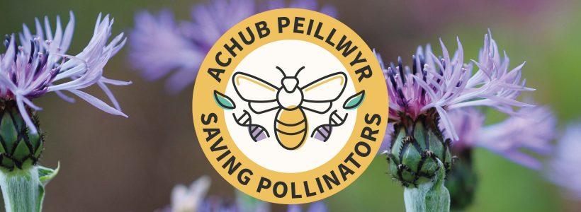 Saving Pollinators Assurance Scheme