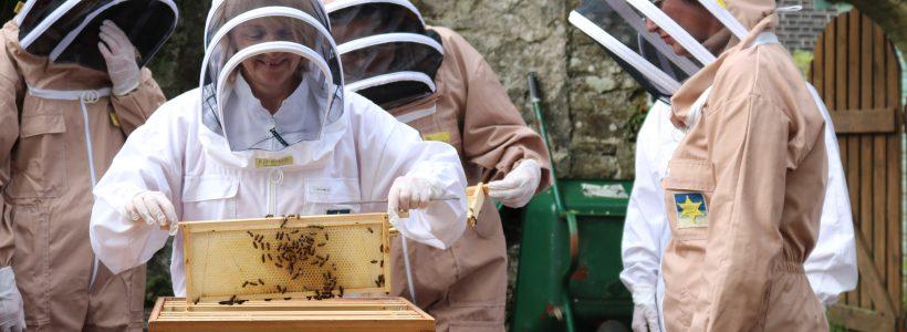 Our Garden Beekeeper - Lynda Christie