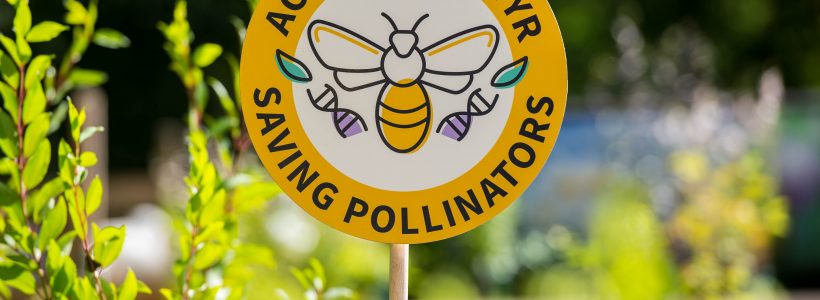 A new assurance scheme for pollinator-friendly plants
